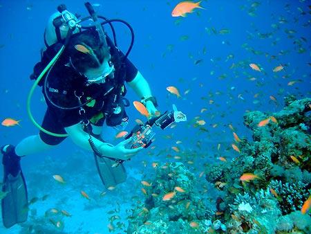 Sharm El Maya - potápění